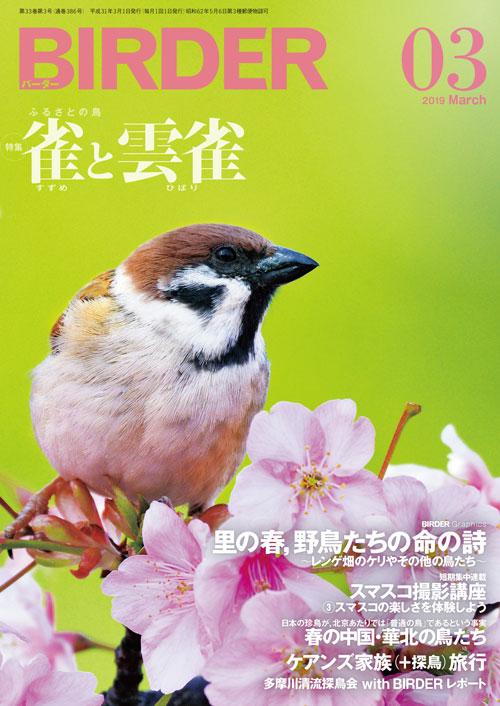 BIRDER最新号