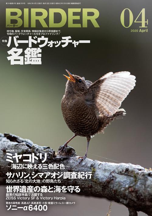 BIRDER