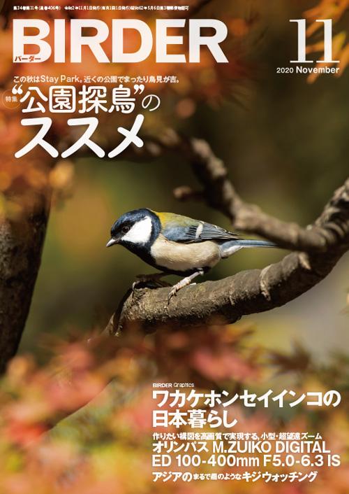 今月のBIRDER