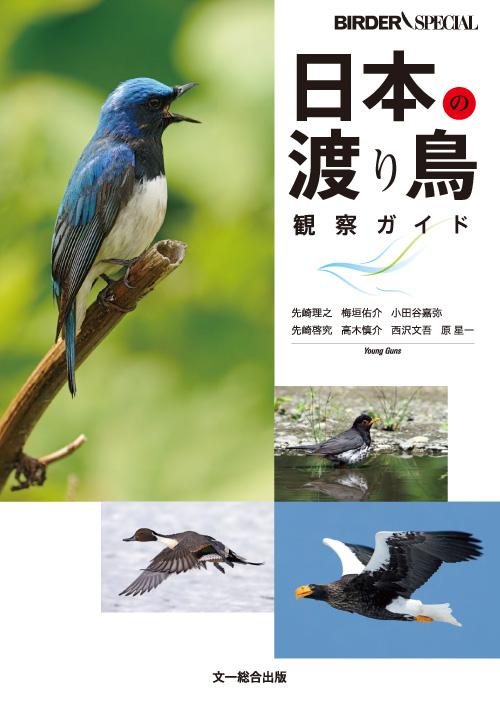 日本の渡り鳥観察ガイド - Japanese migratory bird observation guide.