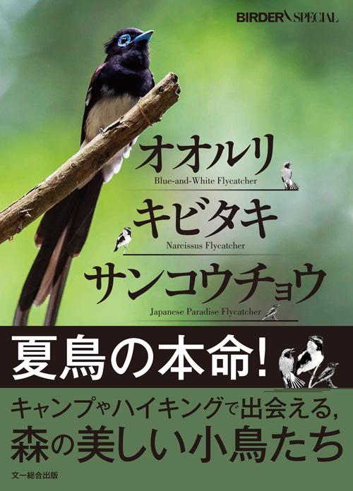 オオルリ・キビタキ・サンコウチョウ